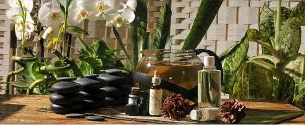 Où trouver Formation naturopathe a distance cpf : soins naturels ulcere Facile
