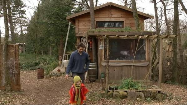 Paillage Bambou Permaculture