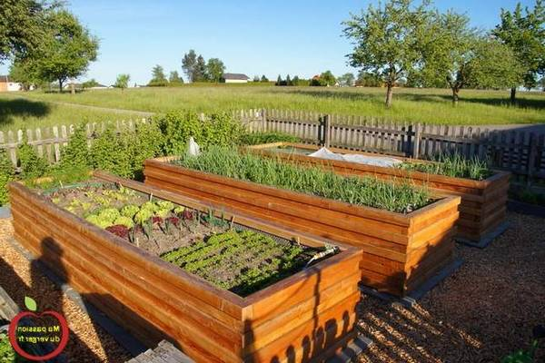A découvrir Formation Permaculture Rncp | Astuces