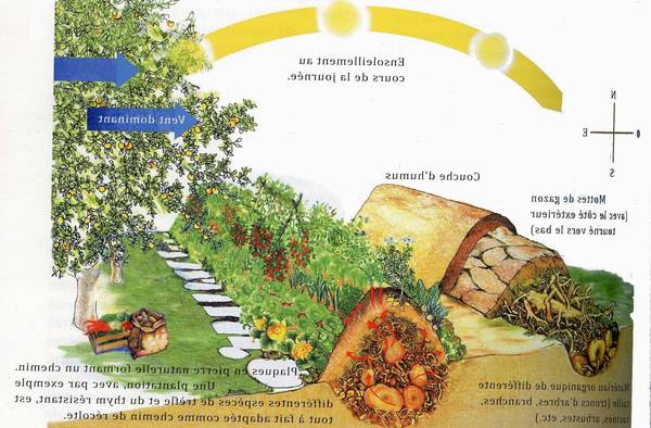 Comment Permaculture Outdoor Kitchen | Ebook