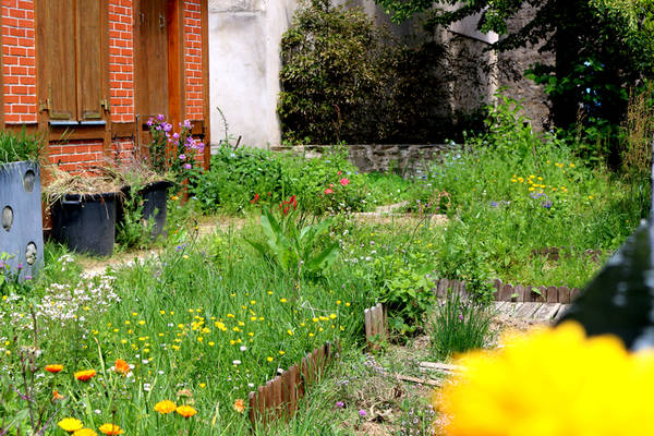 Apprendre Permaculture Hivernage | Infos